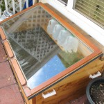 Cold Frame, with water jugs on shelf.